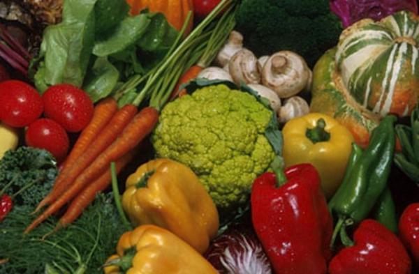 воловичева 30 дневная диета