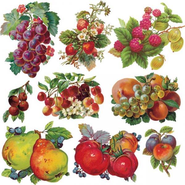 питание на диете минус 60