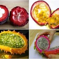 Белковая диета отзывы похудевших с фото до и после